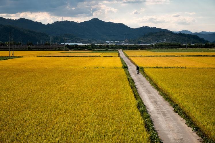 18-10-04---Cycliste-agricole-(Corée-du-Sud)
